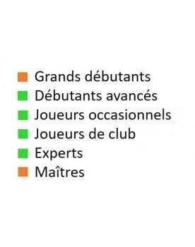 Livre d'échecs français pour débutants avancés, joueurs occasionnels, joueurs de club et experts